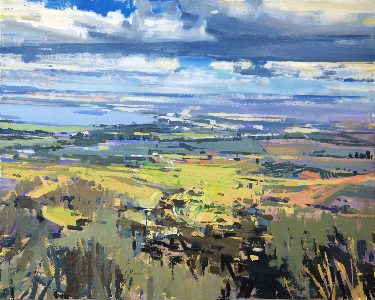 Chris Segre-Lewis ,   Southern Galilee  ,  2018     oil on canvas ,  48